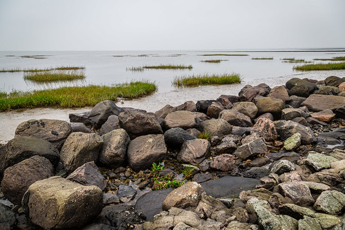 Strandlandschaft II