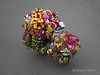 Hanoi (Rolandito.) Tags: south east southeast vietnam asia hanoi vendor flower seller
