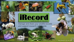 iRecord (Nick:Wood) Tags: nature wildlife wildflower environment conservation uk irecord nbn brc records research