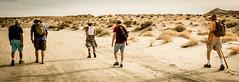 DSCF0814 (rjosef) Tags: borrego desert