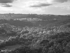 _DSC0126 (rodleo90) Tags: curitiba brasil parque tanguá