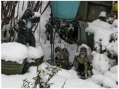 Godzilla No Like Snow! (prima seadiva) Tags: december godzilla jurplasticpark mygarden snow