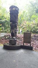 20171219_115705 (Az Skies Photography) Tags: samsung cell phone samsungcellphone cellphone hawaii hi anniversary trip 25th 25thanniversary anniversarytrip 25thanniversarytrip december 2017 19 december192017 12192017 121917 tropical botanical garden hawaiitropicalbotanicalgarden tiki idol statue tikistatue tikiidol god hawaiian hawaiiangod travel travelphotography vacation hawaiianvacation rain raining cloudy overcast