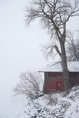 winter in Wisconsin (humbletree) Tags: madisonwisconsin winter snow lakemendota