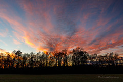 Sun Sets on Another Year (John H Bowman) Tags: virginia jamescitycounty sunsets afterglow greatskies silhouettes baretrees winter december2017 december 2017 canon24704l explore
