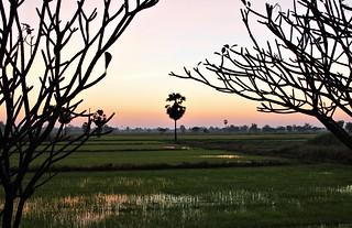 Sukhothai treasure
