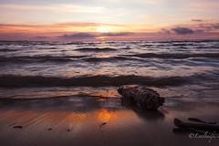 DSCF0654-Edit (Lealtadpics) Tags: coantrim fujifilm xt2 water loughneagh sunset log