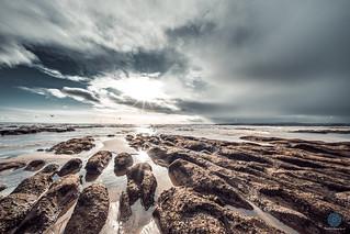 Exmouth Beach (Moody Series)