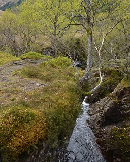 Glen Nevis, Lochaber, Fort William