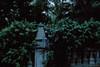 * (Wolf's Kurai) Tags: mysterious plague doctor darkness portrait nature cementery wolfkurai wolfskurai