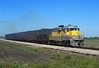 308, Moore Haven, 22 Nov 2017 (Mr Joseph Bloggs) Tags: emdgp11 emd gp11 electro motive division gm general motors usa united states america ussc sugar corporation south central florida express clewiston moore 308 train treno freight cargo merci bahn railway sugarcane