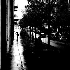 On the rainy path (pascalcolin1) Tags: paris13 femme woman pluie rain reflets reflection photoderue streetview urbanarte noiretblanc blackandwhite photopascalcolin canon50mm 50mm canon parapluie umbrella