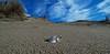 ... là dietro, il mare!! .... behind there is the sea!! (Marco_964) Tags: mare sea cielo sky sabbia sand spiaggia beach pentax pentaxk50 lowpov conchiglia shell prospettiva perspective nuvole clouds