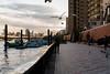 Sumida River (enebisu) Tags: ピンは何故か後の鳥 隅田川 観光客 鳥 bird sigma sdquattroh art013 2435f2 foveon 浅草