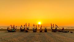 IMG_8532 (Tarek_Mahmud) Tags: bangladeshr boat chittagong coxsbaza coxsbazarcamping hiking landscape people portrait stars sunset tmp tmphotography tob tarek tarekmahmud tarekmahmudphotogtaphy tobmadventure winte fisherman fishing longestseabeachintheworld makinglove mhd seabeach travel trk trkmhd