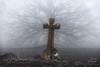 Los largos tentáculos de la cruz. (LANTADA Fotografia) Tags: arbol niebla cruz