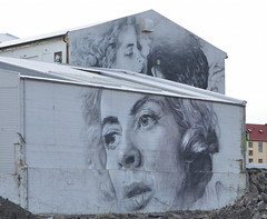 Ingrid Bergman (email@allenreavie.com) Tags: ingrid bergman iceland mural black white bw wall film star celebrity nikon d800