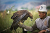Kirghizistan: le fauconnier et son rapace. (claude gourlay) Tags: kirghistan kirghizistan kirghizie asie asia asiecentrale claudegourlay portrait retrato ritratti bokonbaevo issykull ysykkol