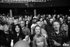 2017 Bosuil-Het publiek bij The Road Home en Vandenberg's Moonkings 9-ZW