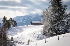 Vorderland__ (ArweBar) Tags: appenzell appenzeller vorderland appenzellerland mountain berg montagne suisse schweiz svizzera suica suiza switzerland winter hiver landscape landschaft canoneos1dx 1dx ef28300 flickrelite