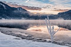 2017.jpg (f.s.salz) Tags: austria hintersee winterwonderland frost frozen winter snow landscape orange lake salzburg nikon d750