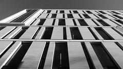 lofty perspective 02 (byronv2) Tags: edinburgh edimbourg scotland southside georgesquare edinburghuniversity university architecture building contemporaryarchitecture modernarchitecture perspective upwards blackandwhite blackwhite bw monochrome