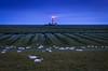 Leuchtturm mit Schafen (Petra Runge) Tags: landschaft nordsee küste wattenmeer leuchtturm schafe germany meer coast lighthouse sea blaue stunde north