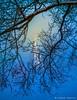 Seeing Through (James Neeley) Tags: idaho idahofalls ldstemple fog jamesneeley