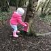 Shenley Park fairy village
