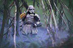 Samurai in the smoke (jezbags) Tags: tamashi nations samurai stormtrooper smoke shfiguarts bandai starwars stormtroopers trooper troopers garden reeds prepared sword macro macrophotography macrodreams canon canon80d 80d 100mm closeup upclose actionfigure