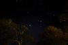Dynamic Astro (Fiachra J Kelly) Tags: astrophotography ireland longexposure stars trees dynamic