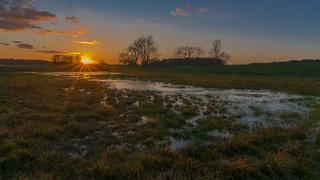 Hochwasser auf dem Feld - High water on the field