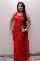 Kannada Times_Nikita Thukral_025
