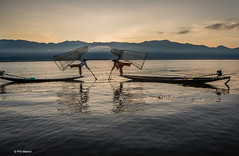 Fishermen putting on a sunrise show for the tourists- Inle Lake, Myanmar (Phil Marion) Tags: myanmar burmese buddhist philmarion candid woman girl boy teen 裸 schlampe 나체상 벌거 desnudo chubby nackt nu ヌード nudo khỏa 性感的 malibog セクシー 婚禮 hijab telanjang nude slim plump tranny sex slut nipples ass boobs tits upskirt naked sexy bondage fuck tattoo fetish asian oriental erotic cameltoe feet cock desi japanese african khoathân latina khỏathân beach public swinger cosplay gay wife dick milf crossdress ladyboy panties babe