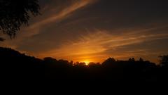 sunset (Darek Drapala) Tags: sun sky silhouette sunset skyskape red nature panasonic poland polska panasonicg5 lumix light landscape