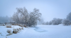 Silence (tods_photo) Tags: ifttt 500px trees fog frozen winter water cold blue ice smooth christmas norway