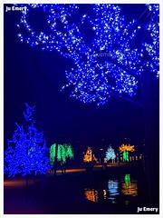 Luzes de Natal/ Christmas lights (Ju Emery) Tags: juemery luzes lights luzesnatalinas luzesdenatal xmaslights christmaslights pontão beautiful bsb brasilia