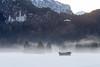 Morning mist (DoXX71) Tags: fuessen neuschwanstein schloss castle