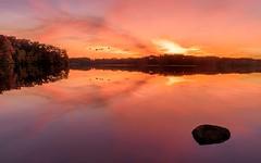 Evening Flight (Wes Iversen) Tags: hss heronlake holly hollystaterecreationarea michigan nikkor24120mm sliderssunday clouds lakes reflections rocks sunsets swans trees water