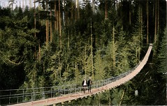 Capilano Suspension Bridge, North Vancouver, BC (SwellMap) Tags: postcard vintage retro pc 30s 40s 50s 60s thirties forties sixties fifties roadside midcentury atomicage nostalgia americana advertising street car linen design style architecture building