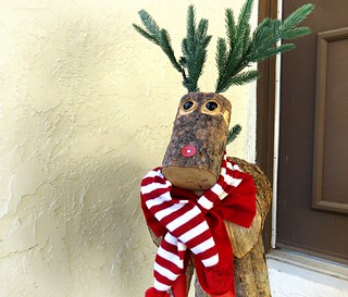 It's the little things, like Luka the Reindeer following me home....