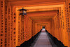 The writings on the...... (21mapple) Tags: fushimi inaritaisha inari kyoto japan japanese tori gate gates orange outdoors outdoor outside out old path stones slabs lamps lights religion religious worldheritagesite heritage site unesco building c canon canoneos