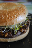 Beast Burger with Broccoli Sprouts (Vegan) (Vegan Butterfly) Tags: vegetarian vegan food yummy tasty delicious beast burger bagel bun sesame seeds broccoli sprouts