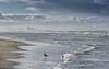 Wintertag - Katwijk aan Zee- (moni-h) Tags: dezember2017 katwijkaanzee niederlande nordsee olympusomdem1 strand strandspaziergang wasser wolken zuidholland nl olympusm40150mm128pro
