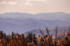 IMG_3305_Smoky Mountains II (Alex Hsieh (椰子人)) Tags: ç´è² smokymountains smokymountainsnationalpark nationalpark roadtrip 2016 fall fallfoliage autumn foliage tn tennessee usa mountain canon canon6d canonef24105mmf4lisusm 6d travel