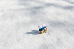 Out in the snow (Arielle.Nadel) Tags: danbo danboard minidanbo cute yotsuba snow winter
