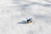 Out in the snow (Arielle.Nadel) Tags: danbo danboard minidanbo cute yotsuba snow winter