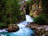 TASSONI MASSIMO (Tassoni Massimo) Tags: paesaggio paesaggi photo piante photoart paysage landscape cascate cascata fiume torrente