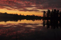 The Early BIrd (Bets<3 Fine Artist ~Picturing Light ~ Blessings ~~) Tags: maine dawn reflections backlit silhouette clouds cloudscape water landscape trees light shadow perspective betsinme mainethewaylifeshouldbe
