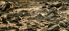 O Caminho das Pedras (Jaime Sales) Tags: pedras rocks pedra furada jeri jericoacoara areia lunar monocromático imenso grande longo brasil brazil ceará ce canon